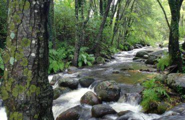escapada-rio-mundo-primavera-6